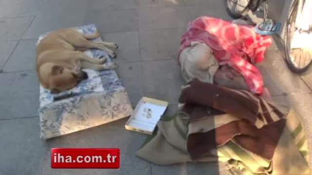 Yıllardır bir cadde üzerinde köpekle birlikte uyuyan adam yürekleri sızlattı